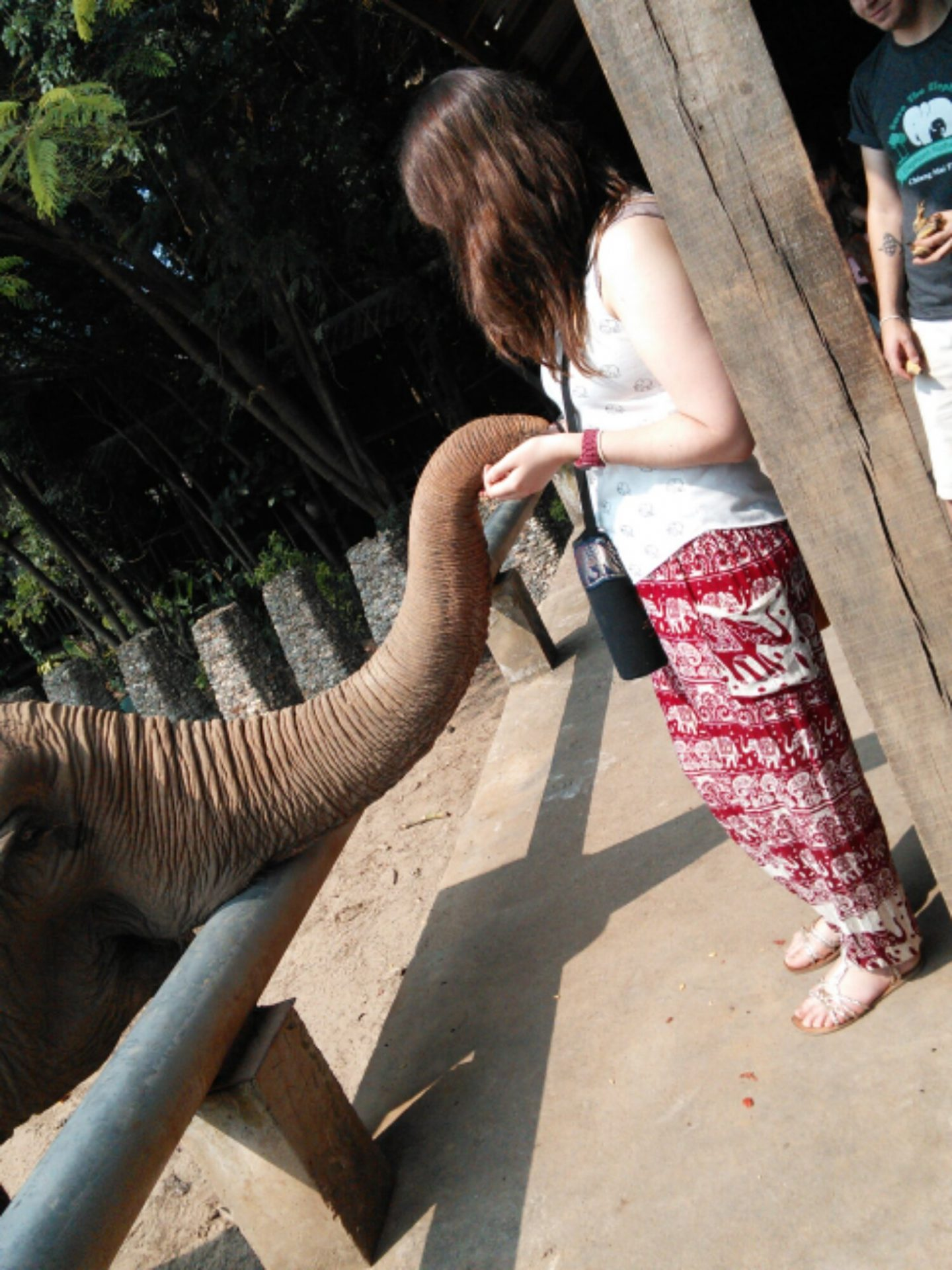 Photos from Chiang Mai & Best of ENP