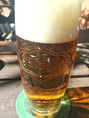 brno beer